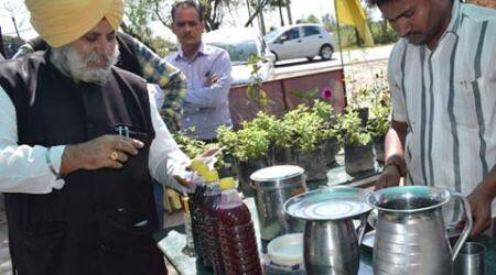 Ludhiana farmer hosts 'organic langar ' to mark Sikh Environment Day