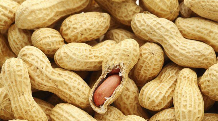 obese, obesity, overweight, weight loss, fitness, peanuts, nutrients, body mass index, BMI, adolescents, adolescent health, snacking, healthy snack, health benefits of peanuts