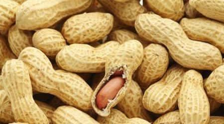 peanuts, peanuts health, peanuts health goodness, peanuts heart diseases, heart, heart health, peanuts heart stroke, heart stroke, health, lifestyle, indian express, indian express news