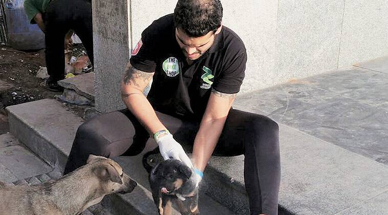 delhi man attacks dog, delhi dog killer, delhi man kills dogs, dog killer delhi, delhi puppy killer, delhi news, india news, delhi dog killer video,