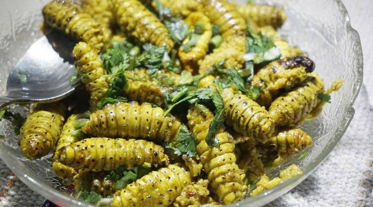 Eating discovering and learning in nagaland the indian express silkwormlarvae main forumfinder Choice Image