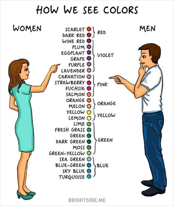 Women Vs Men: 14 pictures that illustrate differences between the two genders (or not)