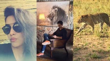 Asin, husband Rahul Sharma enjoy African safari
