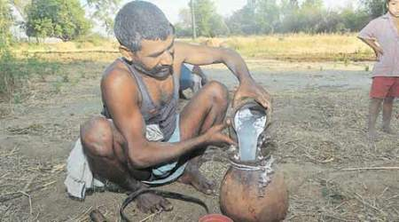 Last spirit standing: A day in the life of a 50-year-old toddy tapper in Bihar