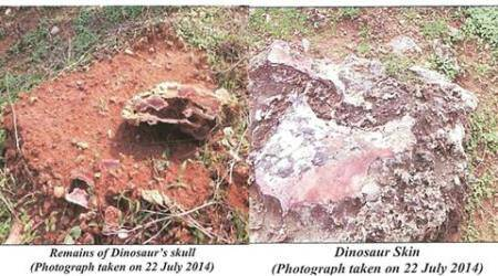 'No Preservation Of Fossils, No Research On Dinosaurs' – Govt neglected, failed to develop Balasinor Dinosaur Park as World Heritage Site