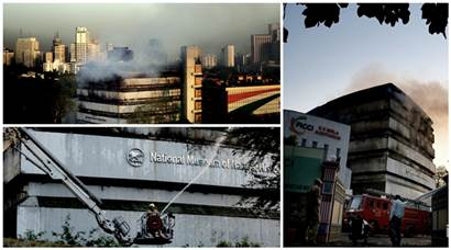Photos: Fire at Delhi's Natural History Museum, several exhibits gutted