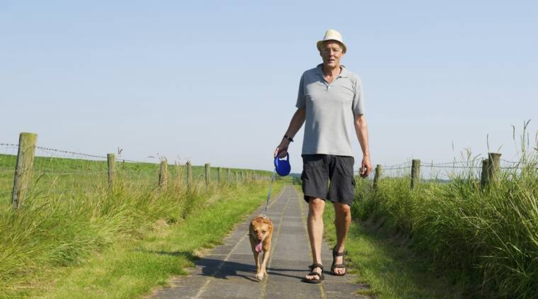 senior citizens, old adults, old adults fitness, health, old adults BMI, old adults dogs, dogs, Lifestyle