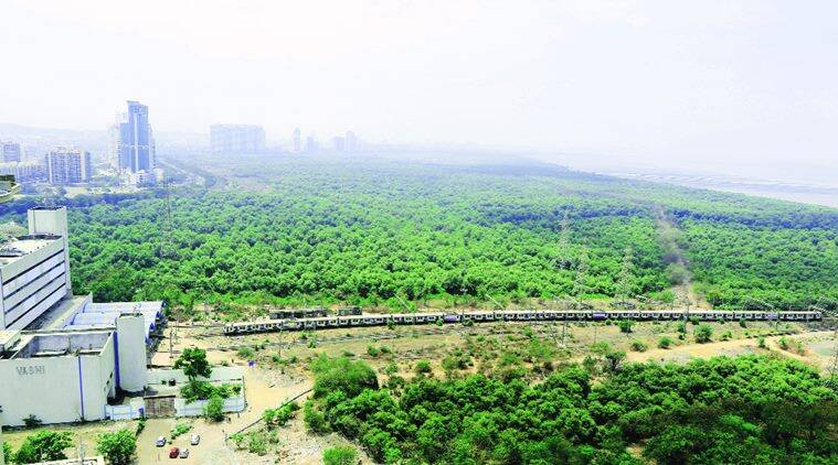 Harbour Line, Harbour Line trains, trains, mumbai Harbour Line, Central Railways, indian railways, mumbai trains, mumbai news