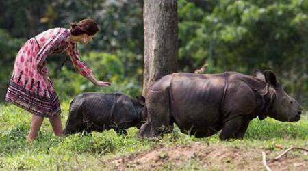 Kaziranga rhino killed during royal couple tour