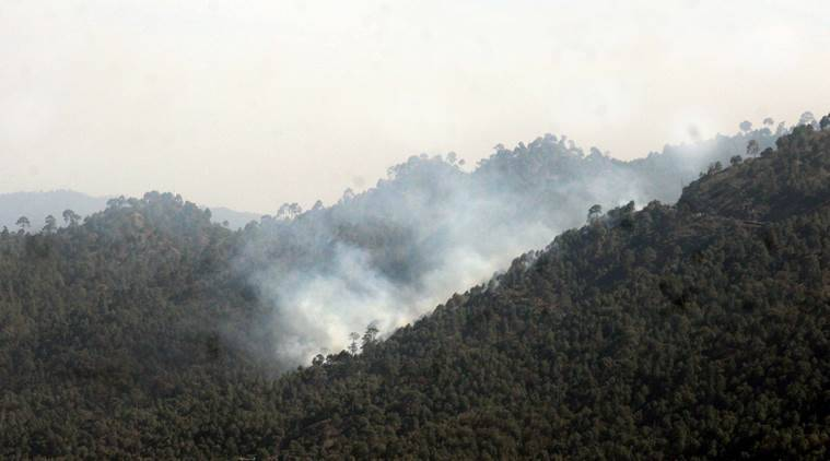 uttarakhand, uttarakhand forest fire, uttarakhand forest fire relief, uttarakhand fire relief work, uttarakhand forest fire ndrf teams, uttarakhand forest fire pmo, india news, uttarakhand news, environment news, latest news