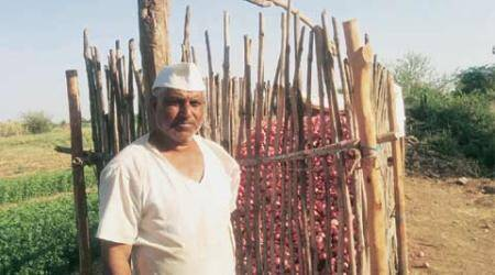 Double whammy: From Rs 55 to Rs 7.5 per kg, onion growers feel the heat