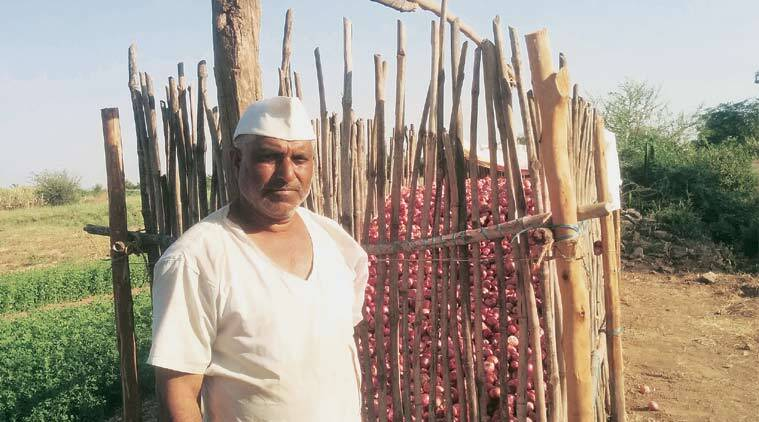 Onion price, india onion crash, onion price india, Onion price Maharashtra, Maharashtra onion productiopn, Maharashtra farmers, business news, onion export price, minimum export price, india news