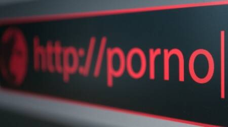 Few subordinate staff in MHA would download porn in office, compromise networks: Ex HomeSecy