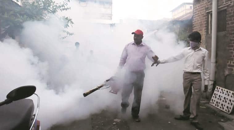chandigarh, dengue, chikangunya, fumigation, health department, health hazard, negligent workers, action, india news, indian express