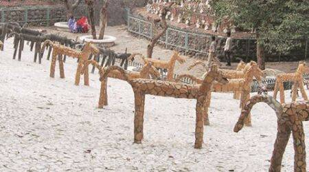 15th Venice Architecture Biennale Exhibition: Nek Chand's garden all set to rock the world at Venice exhibition in May