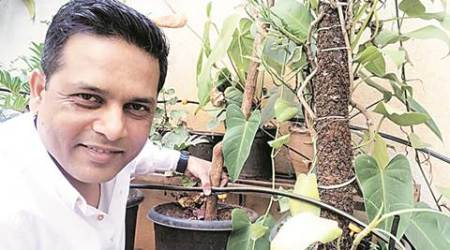 How i save water: 'Drip irrigation saves every littledrop'