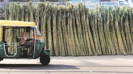 61 sugar factories told to extend EPF benefits to cane labourers