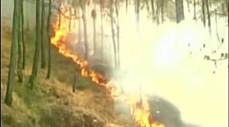 60% doused in Uttarkhandfire