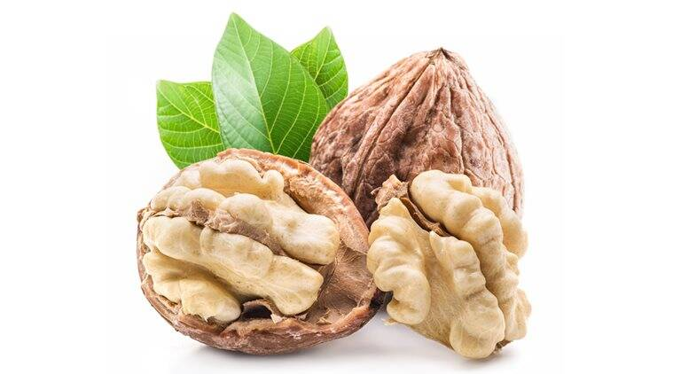 Walnut and walnut kernel.
