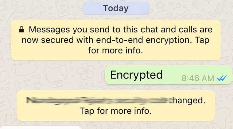 WhatsApp, WhatsApp encryption, WhatsApp end-to-end encryption, WhatsApp chat security, WhatsApp new feature, WhatsApp update, end-to-end encryption in WhatsApp, WhatsApp vs Telegram, WhatsApp security, technology, technology news