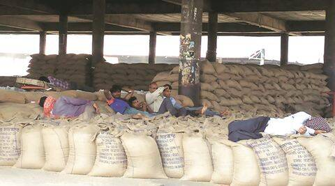 The wheat packed mandies waiting for labour to lift it in Jalandhar.