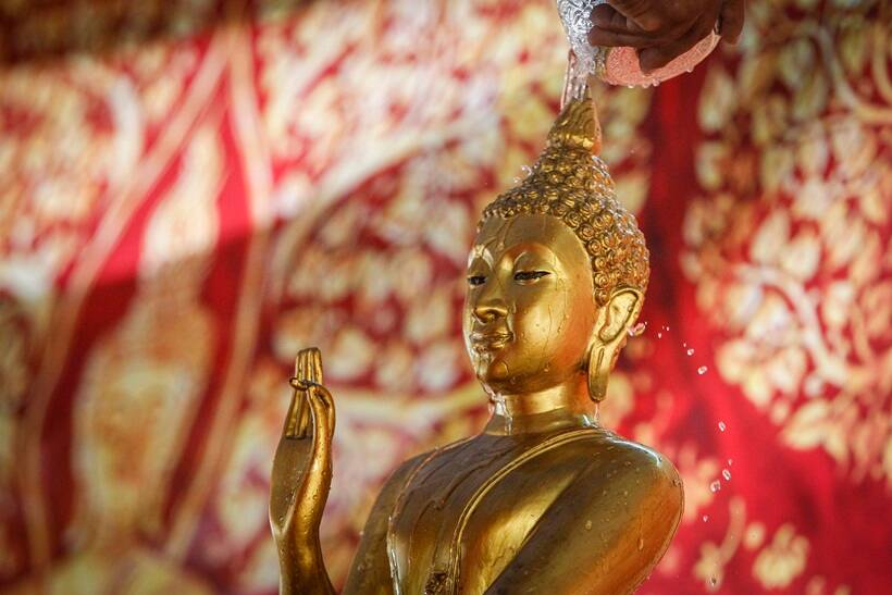 Buddhist accociation in china, Buddhist partying at nun's wedding, Boddhist monks party at nun's wedding, Buddhist monks party in China, China news, latest news, India news, National news, latest news
