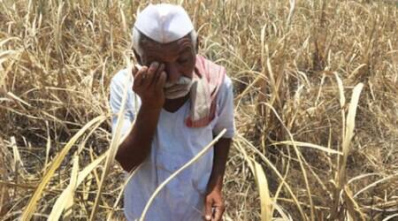 'Wrong crop pattern, drought'; a farmer reveals why he wants to end hislife