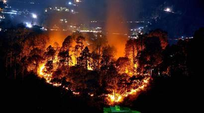 Shimla: A wild fire broke out in a jungle near the northern hill town of Shimla in Himachal Pradesh on Monday.PTI  Photo(PTI5_2_2016_000288A)