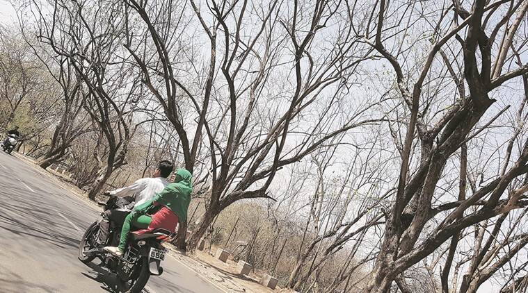 Photo for representational purpose. Sandeep Daundkar
