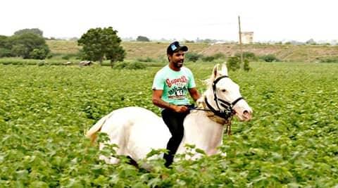 Ravindra Jadeja, Jadeja, Jaddu, Jadeja IPL, Jadeja horses, Jadeja horse, Jadeja instagram, Jadeja cricket, Jadeja horse pictures