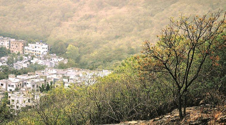 Jammu and Kashmir, J&K, Jammu Kashmir, JK, JK government, Jammu kashmir forest, forests in j&k, india forests, forests in india, jammu kashmir news, india news, latest news