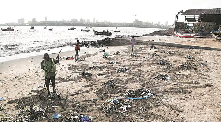 Workers cleaning the beach; collecting trash for disposal. Mahim Chowpatty- Sanket Jain story. Express Photo By Abhijit Alka Anil on 26-5-16 in Mumbai.