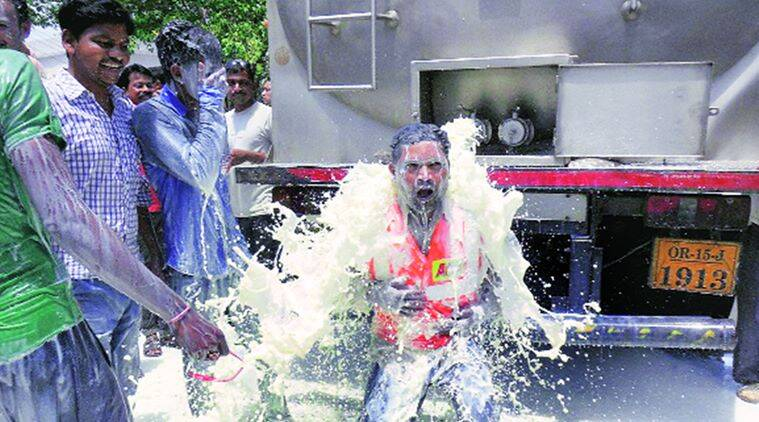 A man bathes in the milk, in Bargarh Thursday. PTI