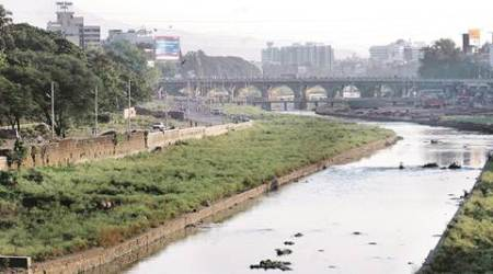No 'Green' Signal To Pune Metro Project: Now, environment litigation filed over realignment of Metro over Mutha river