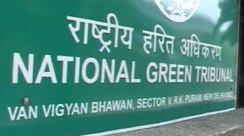 NGT, national green tribunal, green tribunal order, green panel order, wires around trees, concretisation of trees, order to discoms, power discoms, health of trees, environment news, india news