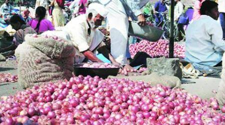 Agriculture Produce Market Committee, APMC, Onion prices, Falling onion prices, Onion bumper crop, Farmer suicides, Drought Maharashtra, Pune, Pune onions, Pune onion prices