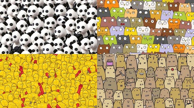 optical hidden spot puzzles test these eyesight illusion eye illusions visual cat animal cigar whats trick panda wall mind indianexpress