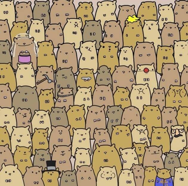 eye test, eyesight test, optical illusions, optical puzzles, spot the cat, spot the panda, spot the animal hidden in the picture, visual puzzles, cigar in the brick wall, cigar in the wall