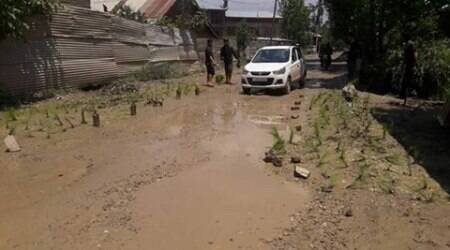 In unique protest, Kashmiri villagers plant paddy on poorly constructedroad