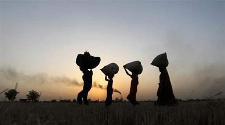 Haryana, rural development, villages, NABARD, NABARD loan, rural Haryana, rural infrasturcture, Haryana news, India news, indian express