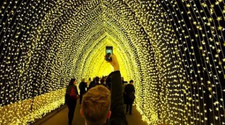 Tunnel of lights, animal lanterns illuminate Sydneyfestival