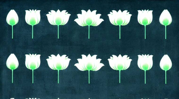 The Lotus Has A Point Lifestyle News The Indian Express