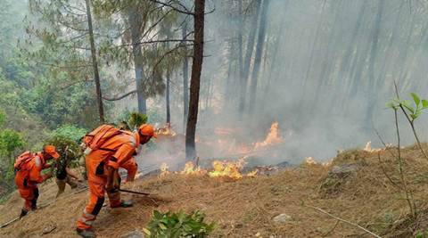 uttarakhand, uttarakhand forest fire, ndrf uttarakhand forest fire, iaf uttarakhand forest fire, india forest fire, uttarakhand news, india news, latest news