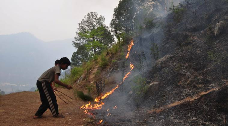 children trying to control foresst fire near their homes,they are trying to safe there homes from the forest fire in shyala village of distict rudraprayag,photo,virender.singh negi