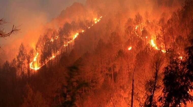 A view of the Uttarakhand forest burning