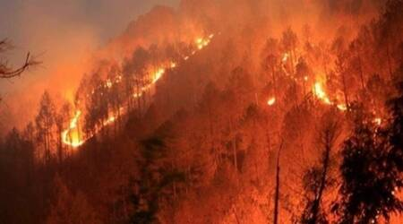 Forest fires: NGT issues notices to MoEF, Uttarakhand, Himachal govts