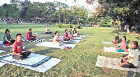 Yoga participants during yoga practice session in green belt sector 20 Chandigarh . Express photo by Sahil Walia