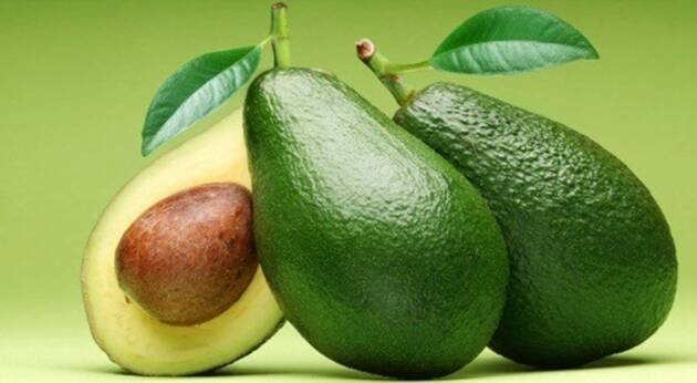 Avocados, eat avocados, avocado consumers, reduce weight, reduce kilos, Cancer, DIY tips, foods, super foods, healthy eating tips, prevention from cardiovascular disease, reduces insulin levels, Indian Express, Indian Express News