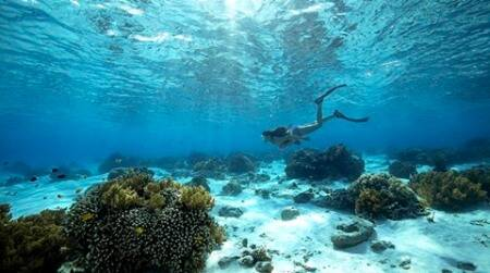 World Oceans Day: Discover the AndamanIslands