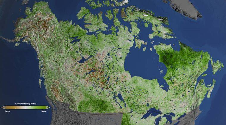 NASA scientists used almost 30 years of data from the NASA/U.S. Geological Survey Landsat satellites to track changes in vegetation in Alaska and Canada. (credits: NASA)